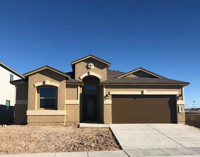 El Paso Single Family Home For Sale: 209 Gonzalo Circle