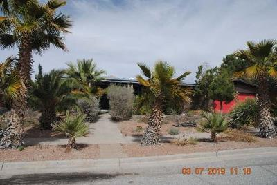 El Paso Single Family Home For Sale: 721 Somerset Drive