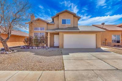 El Paso Single Family Home For Sale: 843 Sun City Park Court