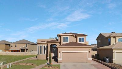 El Paso Single Family Home For Sale: 12908 Hidden Grove Drive
