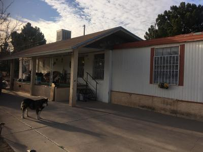Socorro Single Family Home For Sale: 447 Rachel Drive