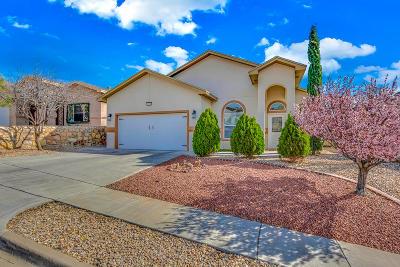 El Paso Single Family Home For Sale: 6324 Franklin Gate Drive