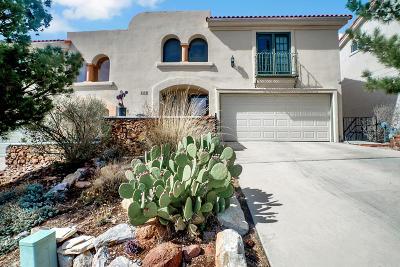 El Paso Single Family Home For Sale: 6256 Escondido Drive