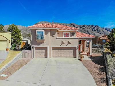 El Paso Single Family Home For Sale: 524 Spring Crest Drive