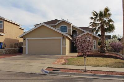 El Paso Single Family Home For Sale: 6336 Dakota Ridge Drive