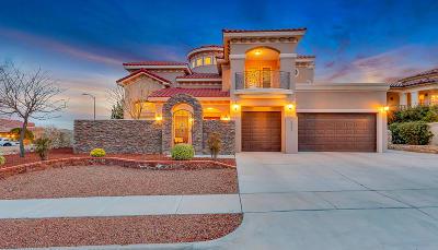 El Paso Single Family Home For Sale: 1227 Franklin Perch Place