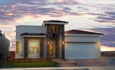 Horizon City Single Family Home For Sale: 13969 Flora Vista Avenue