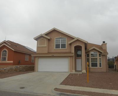 El Paso Single Family Home For Sale: 228 Barnsworth Court