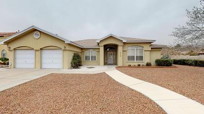 El Paso Single Family Home For Sale: 6605 Isla Del Rey Drive