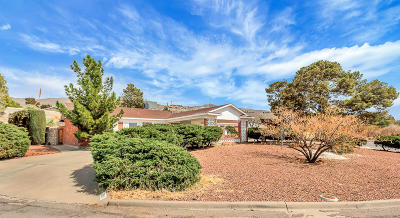 Single Family Home For Sale: 3911 Bancroft Drive