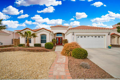 El Paso Single Family Home For Sale: 12965 Kaitlyn Reece Drive