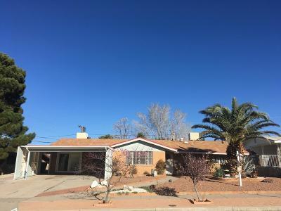 El Paso Single Family Home For Sale: 509 Castile Avenue