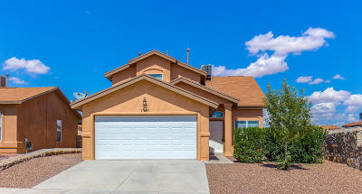 Single Family Home For Sale: 7390 Mesquite Sun Lane