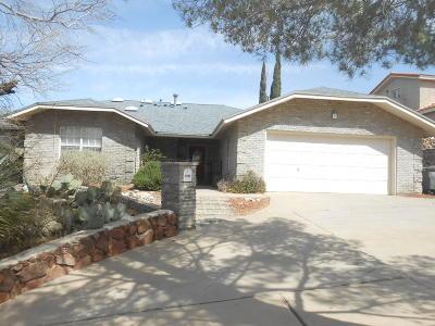 El Paso Single Family Home For Sale: 5845 Los Cerritos Drive