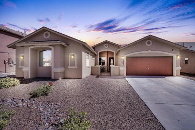 El Paso Single Family Home For Sale: 3128 Lookout Point Drive