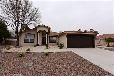 El Paso Single Family Home For Sale: 659 Katherine Court