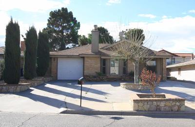 El Paso Multi Family Home For Sale: 11629 Soberana Lane #Unit B