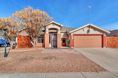 Horizon City Single Family Home For Sale: 732 Desert Silver Drive