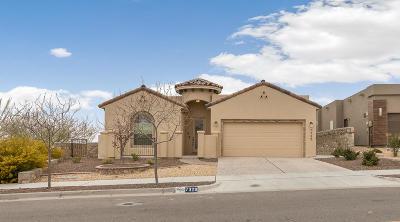 El Paso Single Family Home For Sale: 7329 Steve Degroat Lane