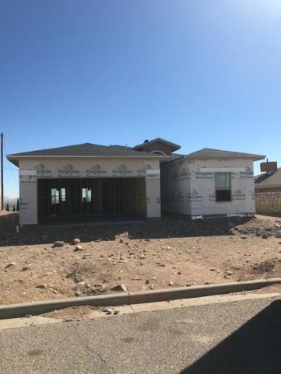 Single Family Home For Sale: 9008 Polaris Street