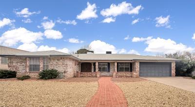 El Paso Single Family Home For Sale: 6832 La Cadena Drive