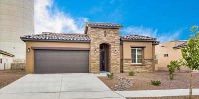 Single Family Home For Sale: 13405 Plumpton Avenue