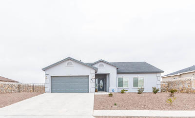 Canutillo Single Family Home For Sale: 801 Jalynn Grace Drive