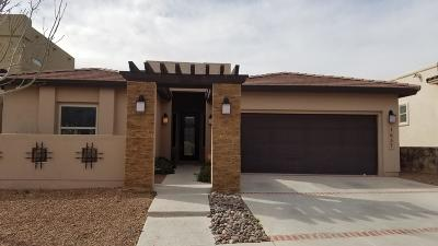 El Paso Single Family Home For Sale: 1657 Land Rush Street