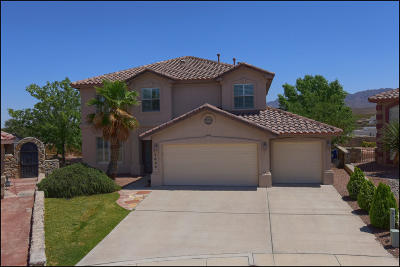 El Paso Single Family Home For Sale: 1633 Quinta Del Sol Court