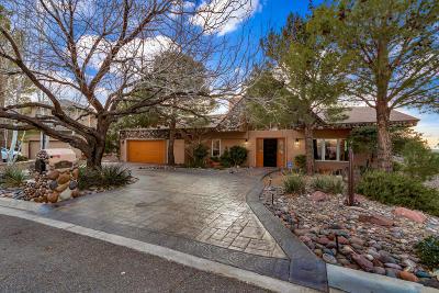 El Paso Single Family Home For Sale: 867 Via Alta Lane