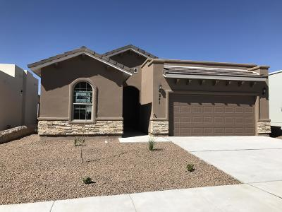 Single Family Home For Sale: 6937 Brown Mesquite Drive