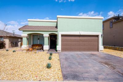 Horizon City Single Family Home For Sale: 14212 Desert Mesquite Drive