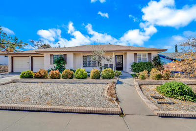 El Paso Single Family Home For Sale: 6720 Southwind Drive