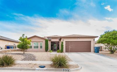 El Paso Single Family Home For Sale: 7338 Black Mesa Drive