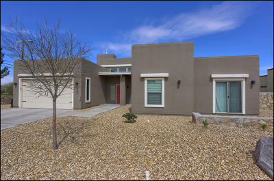 El Paso Single Family Home For Sale: 965 Maximo Drive