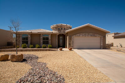 El Paso Single Family Home For Sale: 5713 Valley Maple Drive
