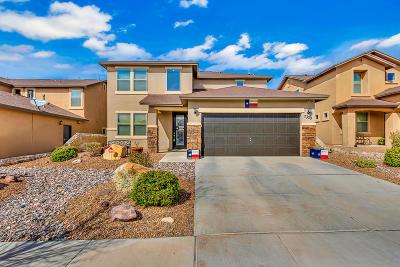 El Paso Single Family Home For Sale: 7329 Black Sage Drive