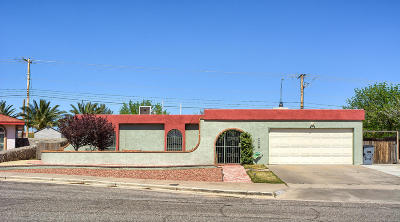 El Paso Single Family Home For Sale: 9477 Eb Taulbee Drive
