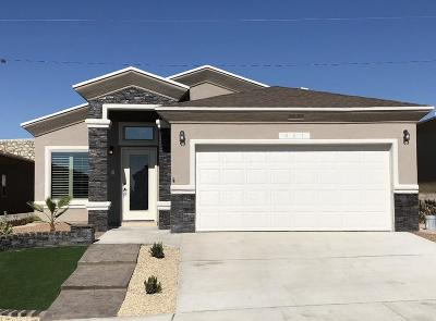 El Paso Single Family Home For Sale: 2159 Abes Way