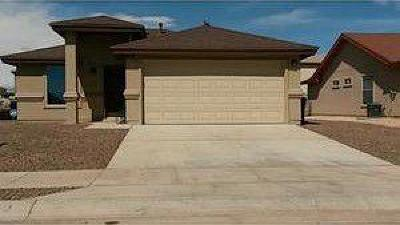El Paso Single Family Home For Sale: 14149 Honey Point Drive