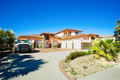 El Paso Single Family Home For Sale: 11421 Patricia Avenue