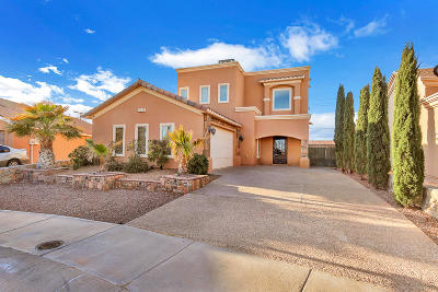 El Paso Single Family Home For Sale: 14430 Misty Point Court