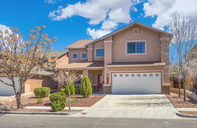 El Paso Single Family Home For Sale: 1516 Mescal Lane