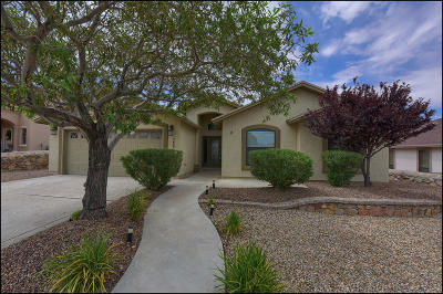 El Paso Single Family Home For Sale: 7432 Brays Landing Drive