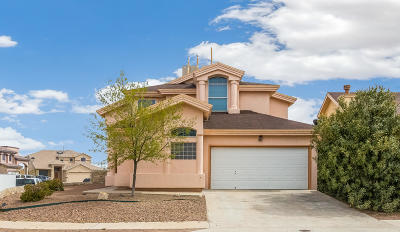 El Paso Single Family Home For Sale: 12856 Tierra Ayala Drive