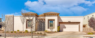 El Paso Single Family Home For Sale: 1701 Old Paint Drive