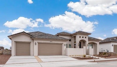 Horizon City Single Family Home For Sale: 12273 Freshwater