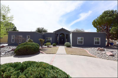 El Paso Single Family Home For Sale: 308 Rio Estancia Drive