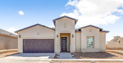 El Paso Single Family Home For Sale: 1721 Preakness Avenue