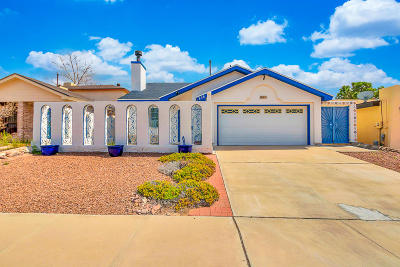 El Paso Single Family Home For Sale: 836 Cloudburst Drive